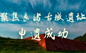 聚焦良渚古城遗址申遗成功