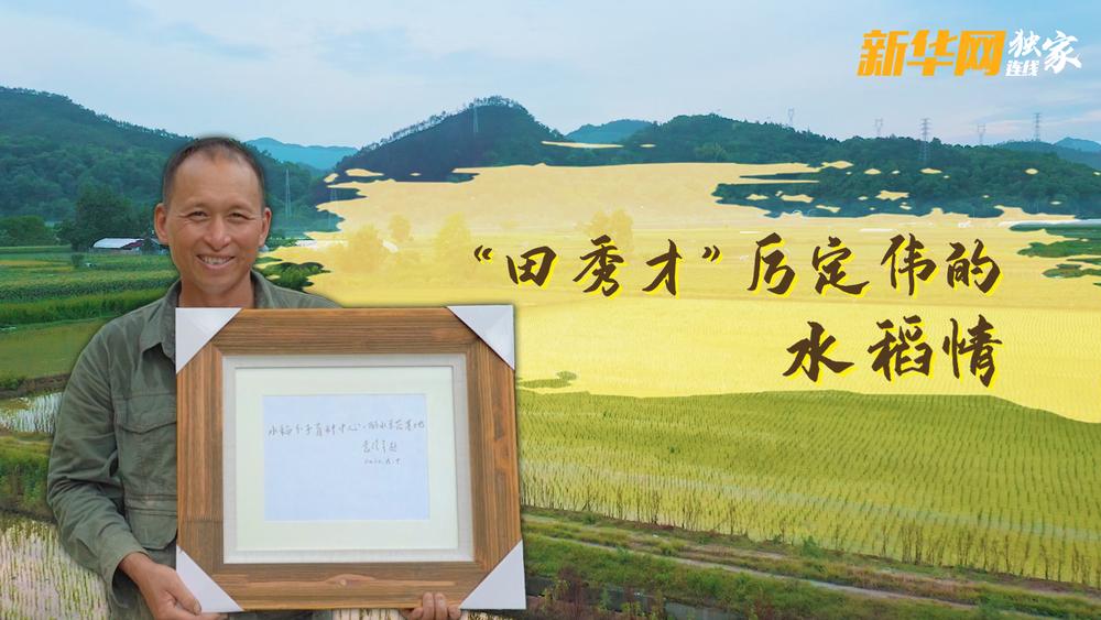 """向往的小康丨""""田秀才""""厉定伟的水稻情"""