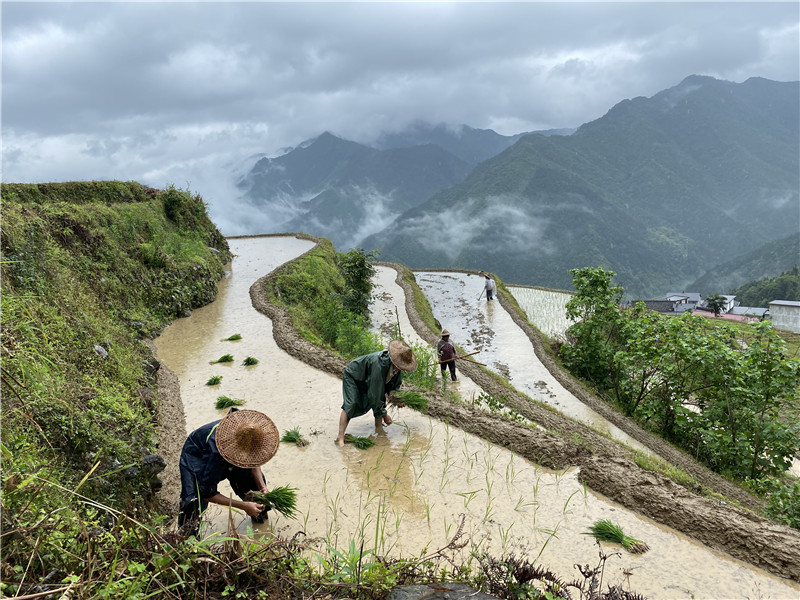 在钱江源头,看生物多样性保护的中国样本